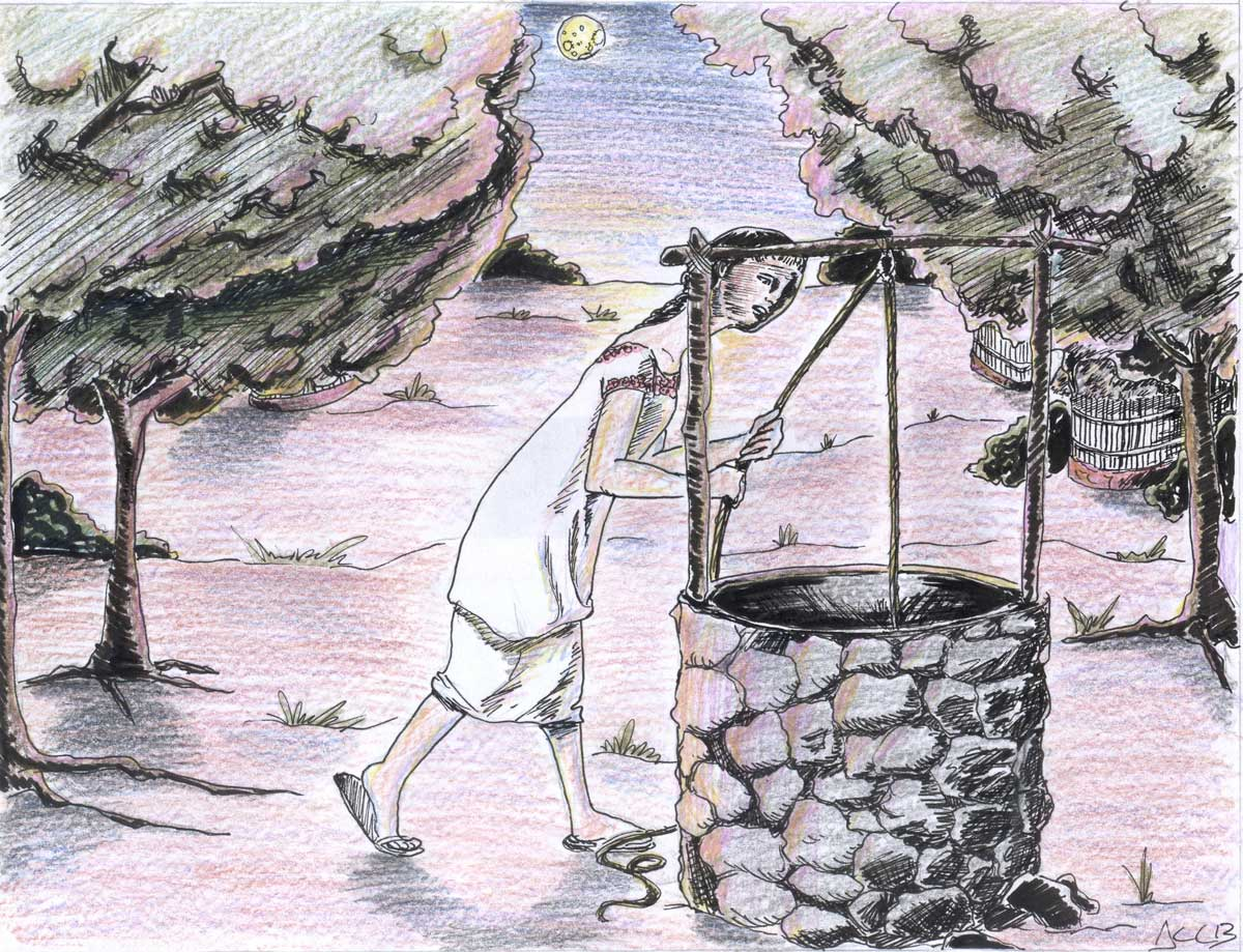 Ilustración: Aimé López.