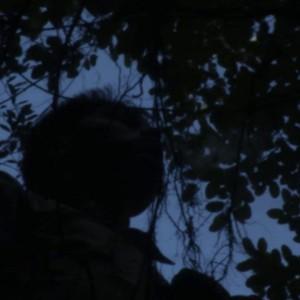 Fotograma, tomada de los Guardianes del Mayab.